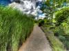 Sostenibilità ambientale convegno anea-casoria-convegno