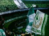 Serie B, una doppietta di D'Angelo ed una rete di Ardemagni regalano un altro successo all'Avellino