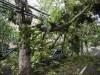 Violenta tempesta in Romania, 8 le vittime e 67 i feriti