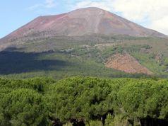 Parte il Grande Progetto Vesuvio, un'iniziativa dell'Ente Parco Nazionale del Vesuvio, per rilanciare l'area protetta-1