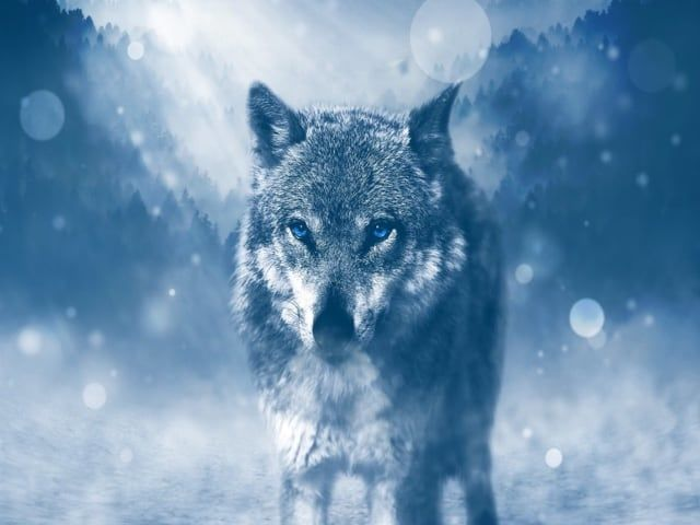 Il simbolismo del lupo per gli Irpini, antica popolazione italica-1