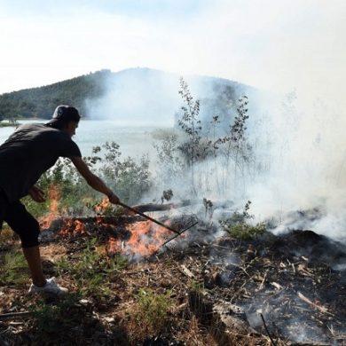 Costa Azzurra in fiamme evacuate dodicimila persone