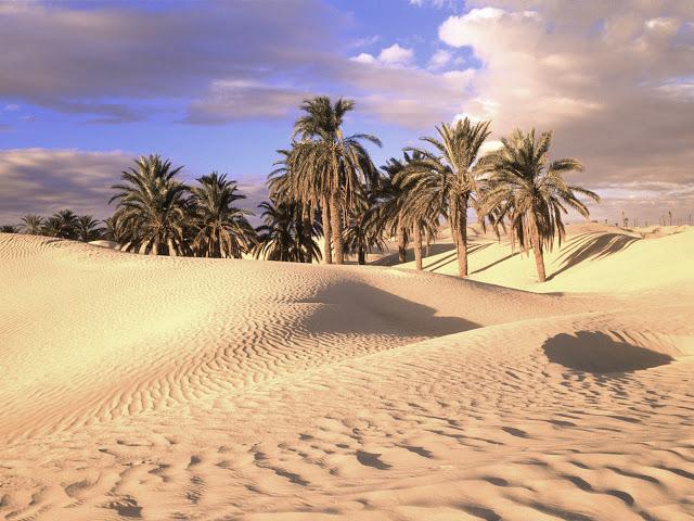 La terra -sahara-deserto