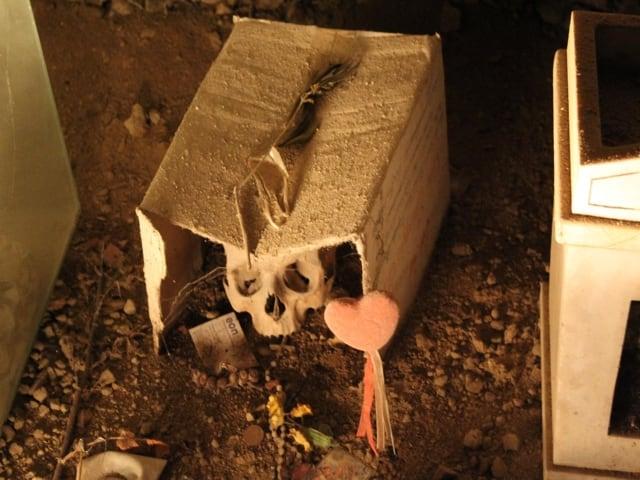 Culto dei morti, a Napoli una tradizione secolare-1
