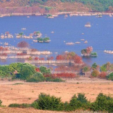 Oasi WWF Lago di Campolattaro, qui la natura ha vinto due volte-4