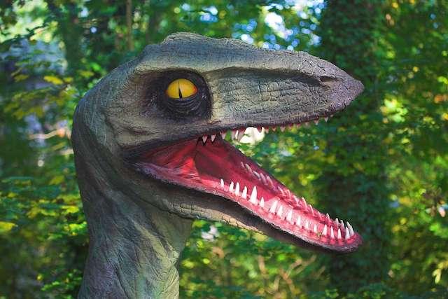 emozionanti visite notturne alla mostra sui dinosauri