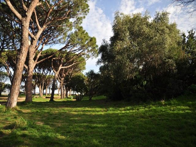 Campagna di sensibilizzazione del FAI per salvare il Parco Virgiliano di Posillipo-3