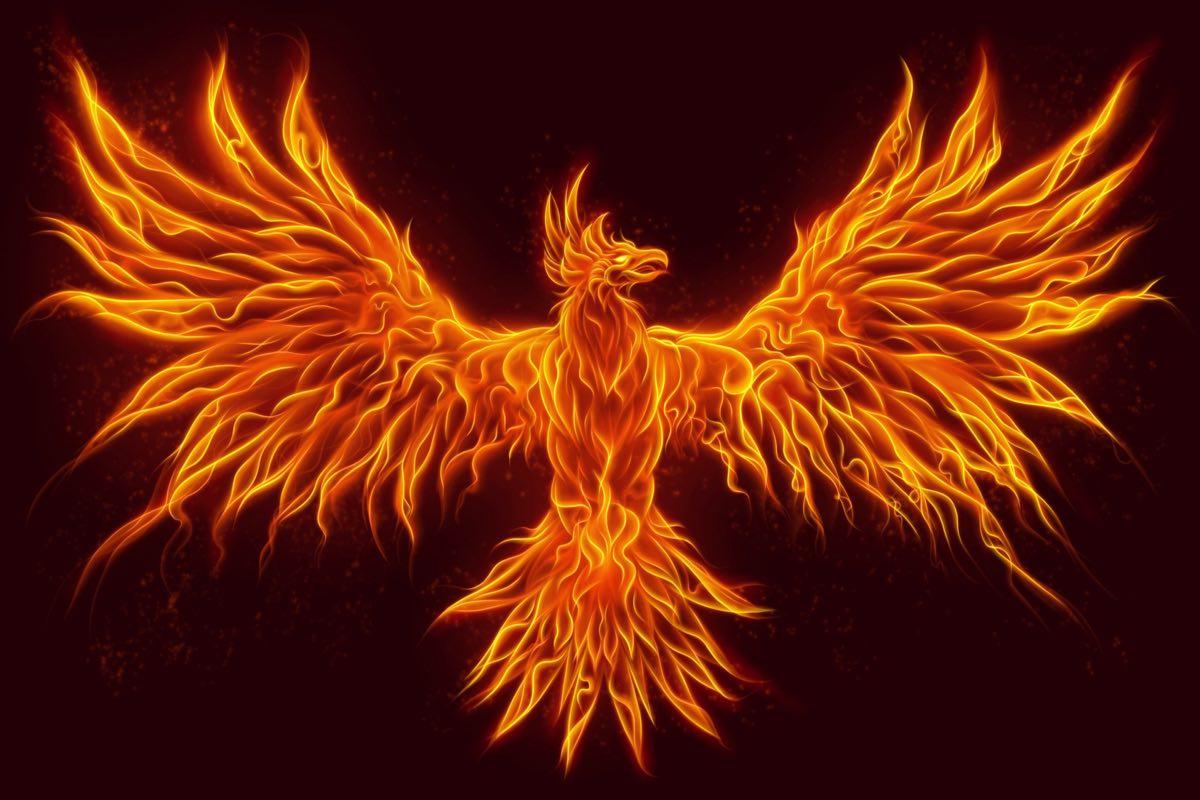 Fenice: animale totemico custode del fuoco di tutto il creato - crono.news